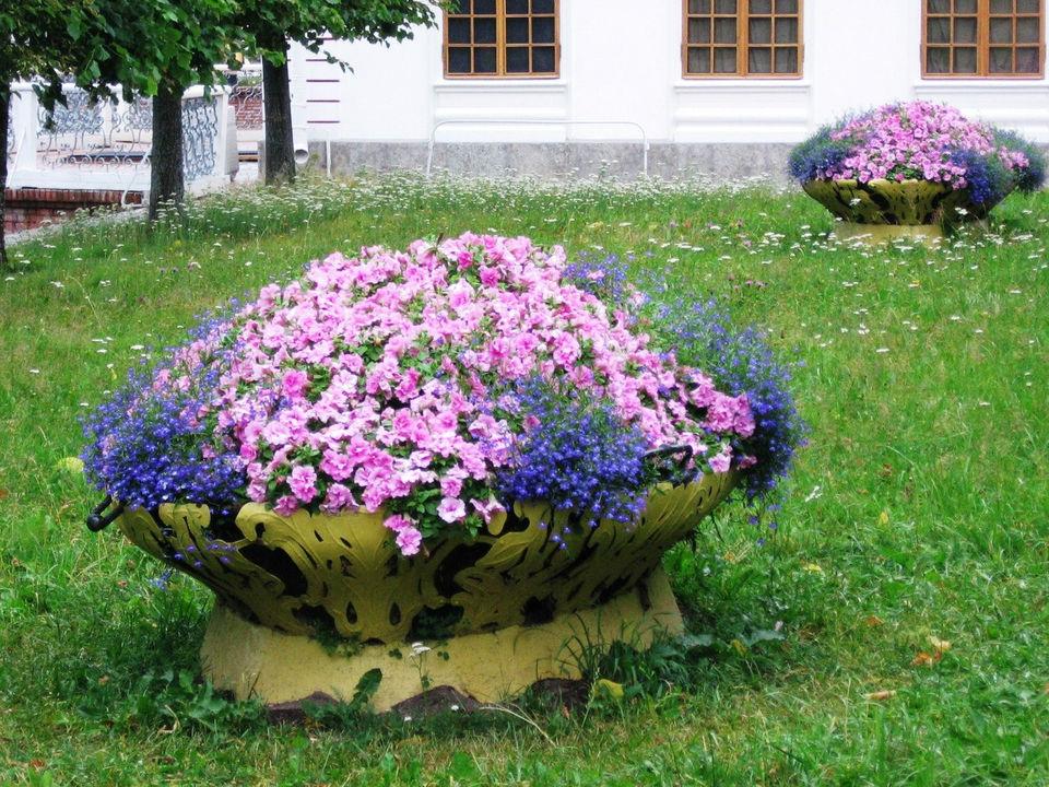Фото квітників на дачі 21 фотография